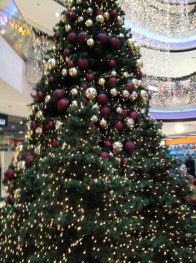 Foto eines Weihnachtsbaumes