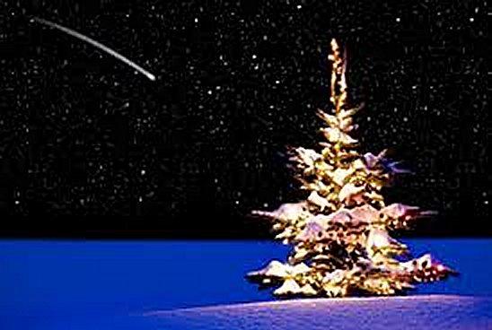 Weihnachtsbaum2014
